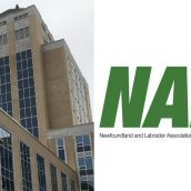 Employers' Council raises red-flag on tentative NAPE agreement with government