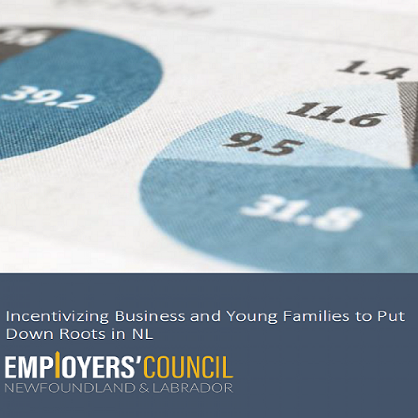 Incentivizing Business and Young Families to Put Down Roots in NL – NLEC Submission to NL Tax Review