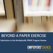 Beyond a Paper Exercise – Submission to the WorkplaceNL PRIME Program Review
