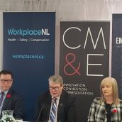 Employers' Council Secures Manufacturing and Processing Safety Sector Council
