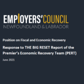 Response to THE BIG RESET Report of the Premier's Economic Recovery Team (PERT)